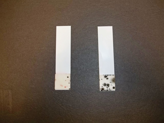 The test strip on the left shows the presence of bacteria in diesel
