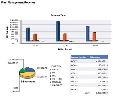 Dashboards containing key information help fleet management quickly see fleet status, said Keith Leech from Sacramento County, Calif. Image courtesy of Keith Leech