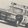 Similar in appearance to its civilian sister, the Nova with police package delivers economy and performance at a savings to tax payers, law officers assert.