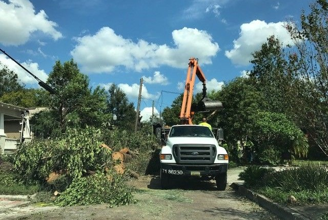 The City of Lakeland is clearing up trees downed during Irma. Photo courtesy of City of Lakeland