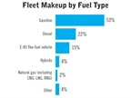 Respondents were asked to provide their fleet breakdown by fuel type